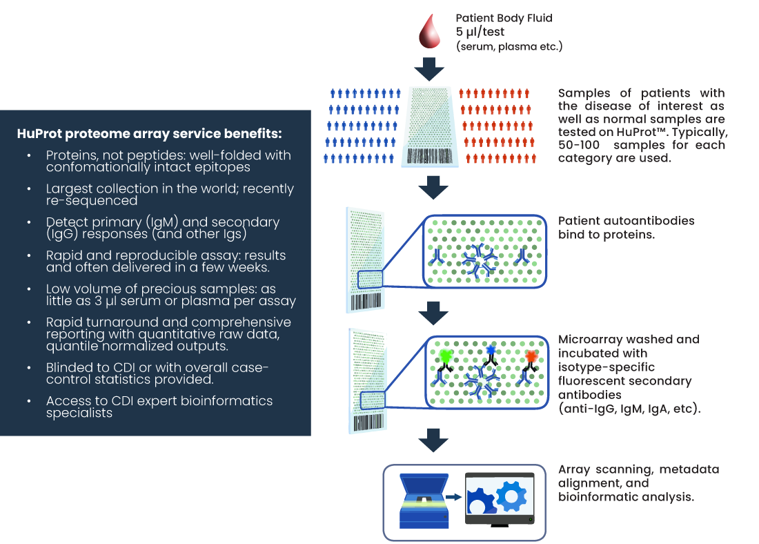 Diagram of HuProt Microarray Antygen Service by CDI Labs